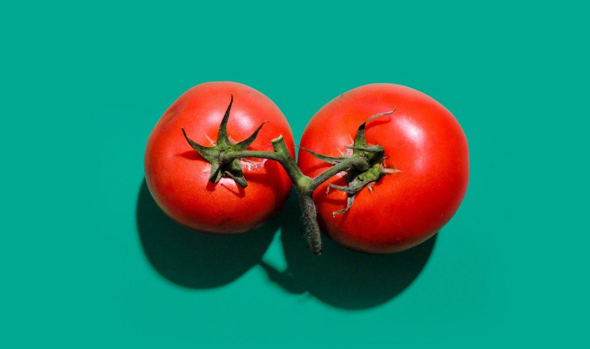 Tomate à faire pousser chez soit